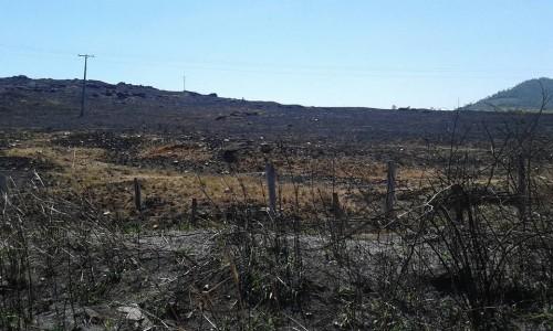 Nas propriedades rurais, as queimadas provocadas pela seca se alastram